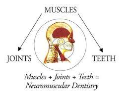 neuromuscular dentistry graphic explaining
